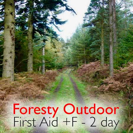F First Aid for Forestry Courses - Highland First Aid