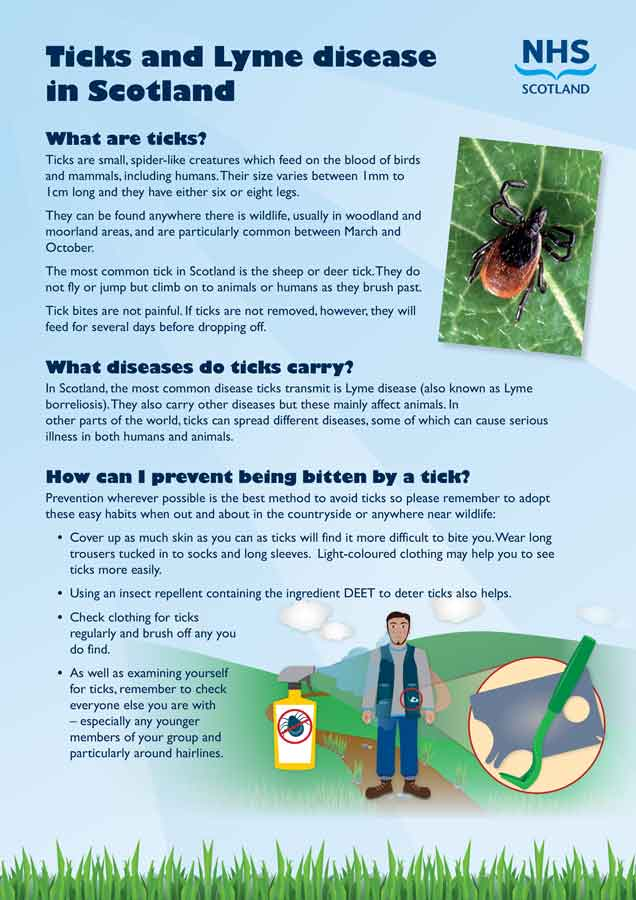 Scottish NHS tick advice flyer
